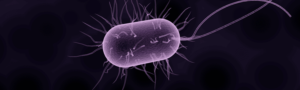 Lampy bakteriobójcze