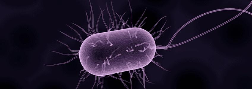 Promieniowanie UV w lampach bakteriobójczych